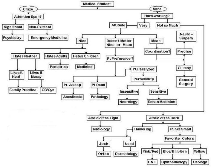 Medical-Student-Algorhythm